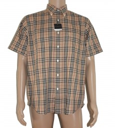 Original Burberry London Herrenhemd Kurzarm Beige (S/M/L/XL)